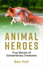 Animal Heroes.jpg